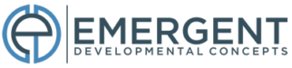 Emergent Developmental Concepts – Cutting edge team-building